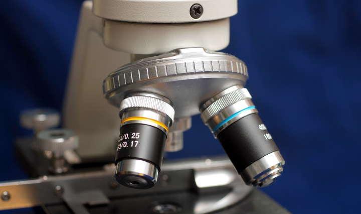 Właściwości zdrowotne syropu klonowego